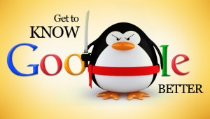 Google Penguin Update 01